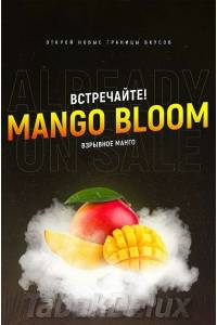 Serbetli Orange Mango (Апельсин Манго) 1 кг