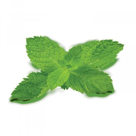 Fumari Mint (Мята) 100 грамм