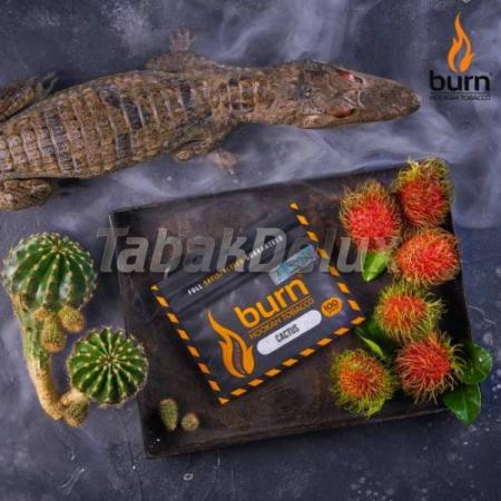 Burn Cactus (Кактус) 100 грамм