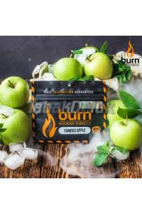 Burn Famous Apple (Яблоко) 100 грамм