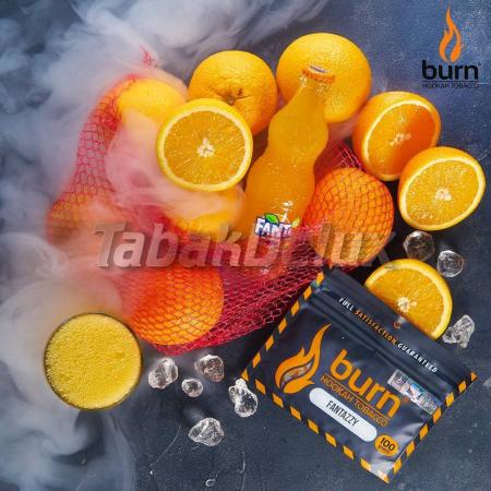 Burn Fantazzy (Фантазия) 100 грамм