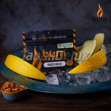 Burn Freeze Melon (Ледяная Дыня) 100 грамм