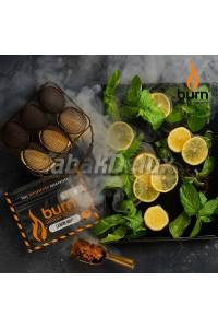 Burn Lemon Mint (Лимон Мята) 100 грамм