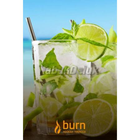 Burn Mojito (Мохито) 100 грамм