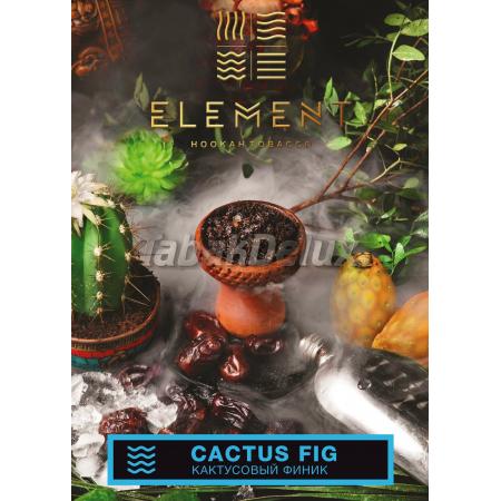 Element Water Cactus Fig (Кактусовый Финик) 100 грамм