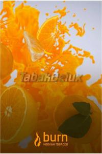Burn Fanta (Фанта) 100 грамм