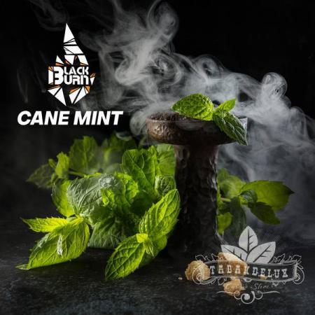 Табак Black Burn Cane Mint (Мята) 100 грамм