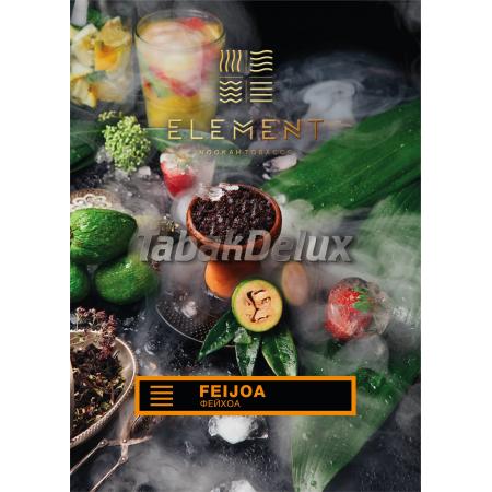 Element Earth Feijoa (Фейхоа) 100 грамм