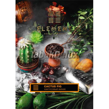 Element Earth Cactus Fig (Кактусовый финик) 100 грамм